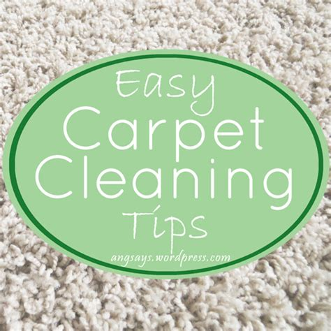 carpet cleaning tips 301 moved permanently