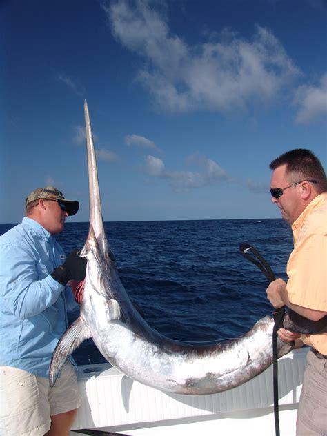 fishing key west bluewater swordfish florida keys swordfishing billfish charter 4cc delphfishing dec
