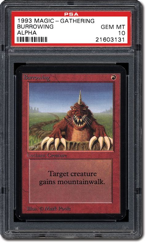 mtg alpha starter deck list psa set registry collecting the 1993 magic the gathering
