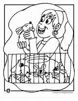 Coloring Pet Rabbit Pages Bunny Animal Print Bunnies Activities sketch template