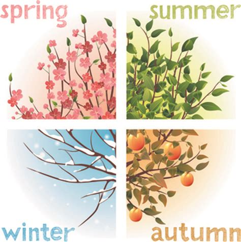 Watercolor four seasons trees vector Free vector in ...