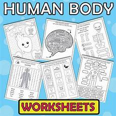Human Body Worksheets  Itsy Bitsy Fun