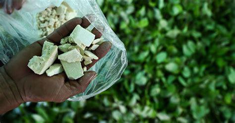 colombia mulls cocaine eradication  drones  drug