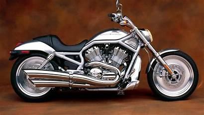 Harley Davidson Rod 4k Cruiser Motorcycle Gray