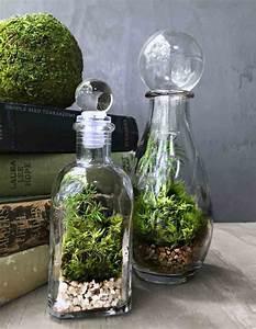 Terrarium Plante Deco : lsd mag deco design do it yourself plante verre facile ~ Dode.kayakingforconservation.com Idées de Décoration
