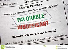 Driver Licence Test Passed French Stock Photo Image of