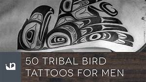 50 Tribal Bird Tattoos For Men - YouTube
