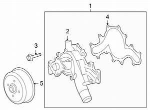 2007 Land Rover Lr3 Engine Water Pump Gasket  Gasket