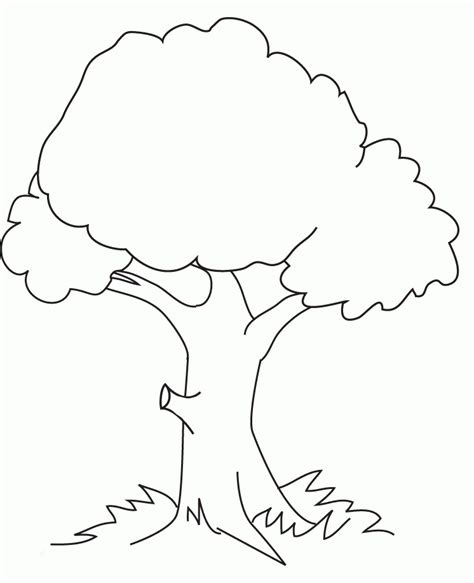 kids coloring pages trees coloring home