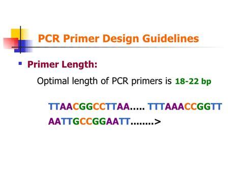 pcr primer design pcr