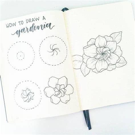 Gardenia Drawing by How To Draw A Gardenia Flower Gardenias Always