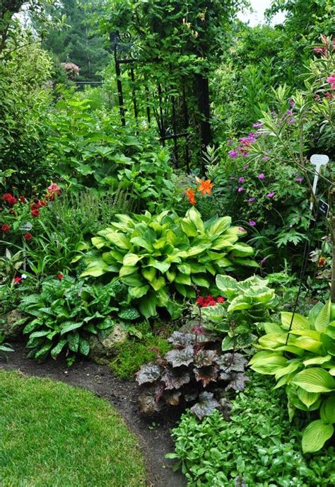 plants for dense shade 130 best ogr 243 d images on pinterest landscaping balcony and flower beds