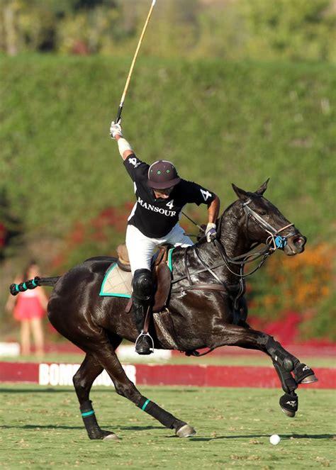polo match horse horses sport equestrian ponies club pony pretty clint participating tack visit