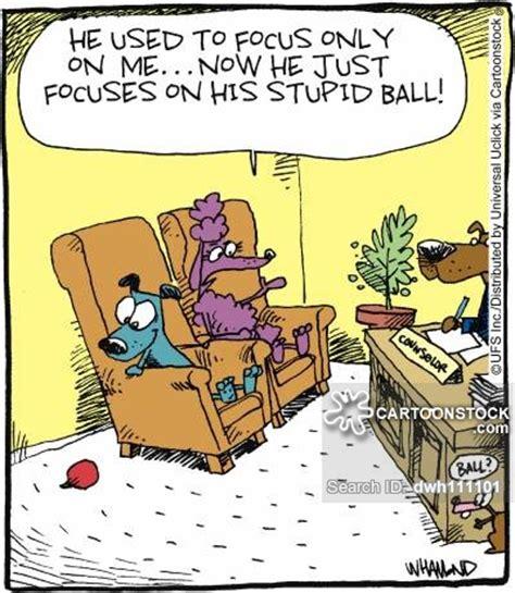 poodle cartoons  comics funny pictures  cartoonstock