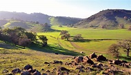 Wildlife Within Silicon Valley: Coyote Valley Open Space ...