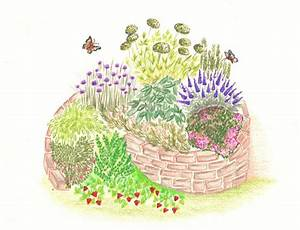 Pflanzen Günstig Kaufen : kr uterspirale kr uterbeete g nstig online kaufen pflanzen online kaufen pflanzen bestellen ~ A.2002-acura-tl-radio.info Haus und Dekorationen