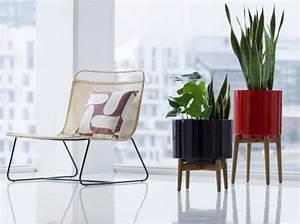 Cache Pot Plante : quelle plante mettre dans un pot haut pivoine etc ~ Teatrodelosmanantiales.com Idées de Décoration