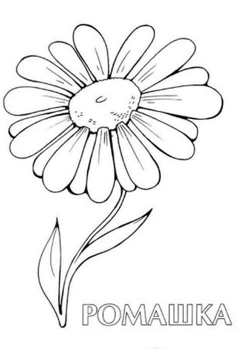 Daisy flower tattoo sample - Tattoos Book - 65.000 Tattoos