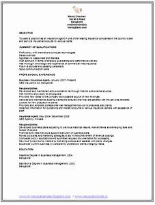over 10000 cv and resume samples with free download With free insurance resume templates