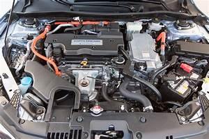 Honda Accord  Contendiente Al Auto Del A U00f1o De Motor Trend 2017