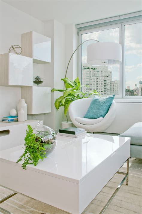 tips  tricks   plants  modern interior design