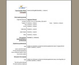 curriculum vitae cv da compilare online motorcycle review and galleries