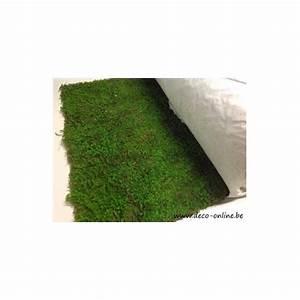 Rouleau De Mousse : rouleau de mousse stabilisee vert 50cmx300cm 1st deco online ~ Melissatoandfro.com Idées de Décoration