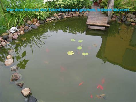 klares teichwasser ohne filter positive erfahrung mit koiteichfilter aus 2 regentonnen