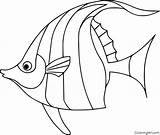 Coloring Angelfish Outline Easy Printable Pesci Fish Colorare Any Artesanato Disegni Drawings Yellow Disegnare Idee Vector Pesce Automatically Device Paper sketch template