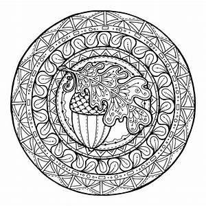 Mandala Acorn And Oak Leaves Mandala To