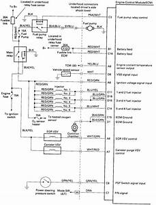 2001 Honda Accord Fuel Pump Wiring Diagram Diy Enthusiasts