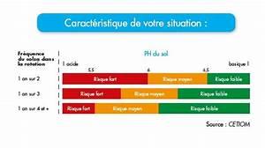 Ph Du Sol : hernie du chou solution pour l hernie du chou dekalb ~ Melissatoandfro.com Idées de Décoration