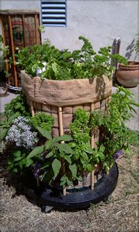 Urban Organic Gardener Fans Get A 15% Discount On A
