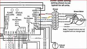 Liebert Minimate Wiring Diagram