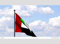 Animated Flag Of United Arab Emirates Stock Animation