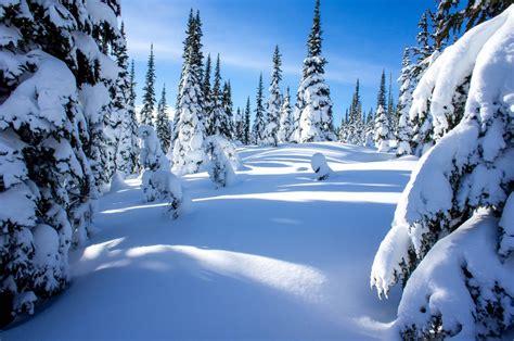 Zoa Peak Snowshoe Adventure  This Timeless Moment