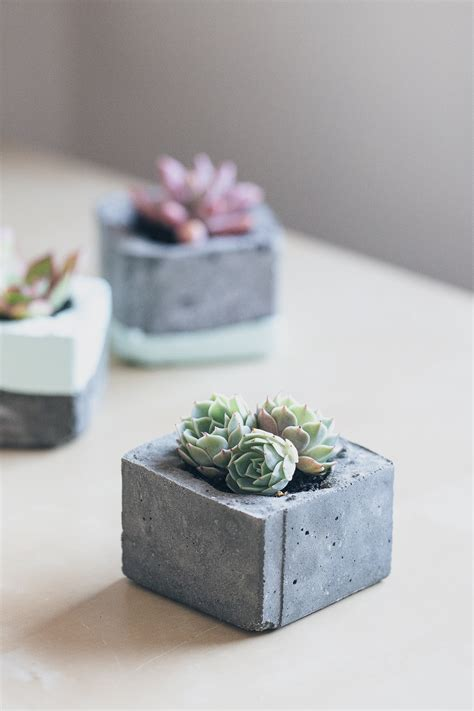 cement planters for diy concrete planters erin made this