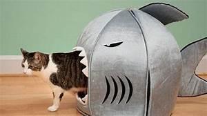 Panier Chat Pas Cher : une maison pour votre chat pas ch re qu 39 il va adorer ~ Teatrodelosmanantiales.com Idées de Décoration
