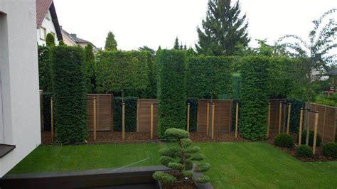 Sichtschutz Garten Hoch by Www Moderner Sichtschutz Im Garten Sichtschutz 2 50 M Hoch