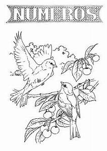 Adult Coloring Pages Printable Free Page New York State Bird And