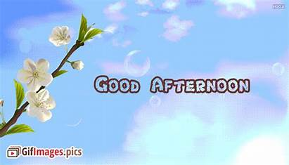 Afternoon Quotes Animated English