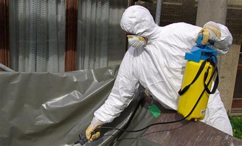 remove asbestos   frugal