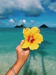 Hawaiian Flowers and Beach