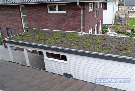 Dachbegrünung  Gartenhaus Oder Carportdach Im Satten Grün
