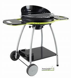 Barbecue Charbon De Bois Pas Cher : support plancha beton free barbecue gaz avec plancha ~ Dailycaller-alerts.com Idées de Décoration