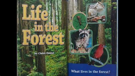 life   forest part  reading street grade