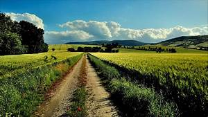 Nature, Landscape, Field, Clouds, Dirt, Road, Wallpapers, Hd, Desktop, And, Mobile, Backgrounds