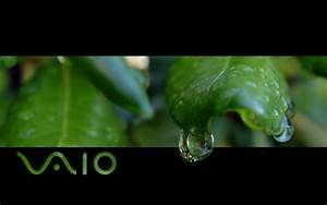 Sony Vaio Wallpaper 1080p - WallpaperSafari