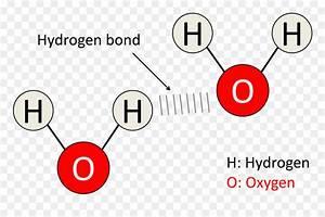 Diagram Hydrogen Bond Molecule Water Chemical Bond
