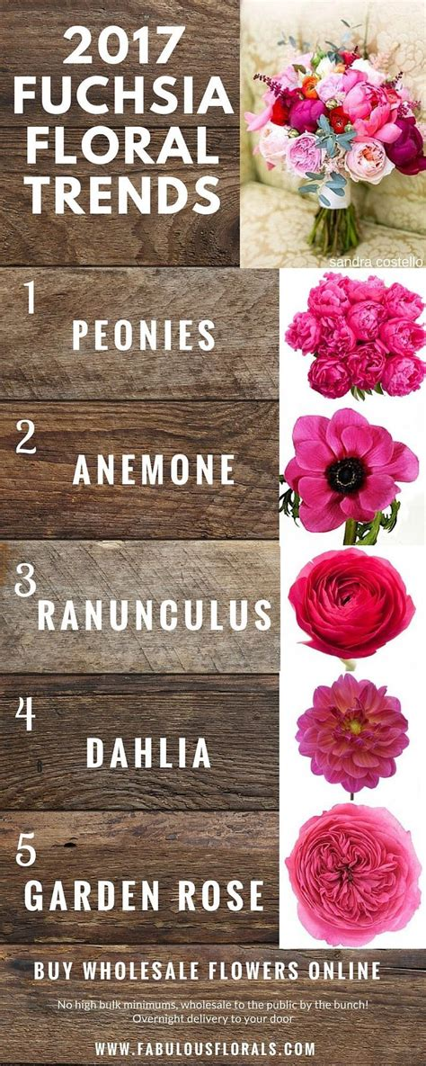 Learn about types of pink flowers and see pink flower